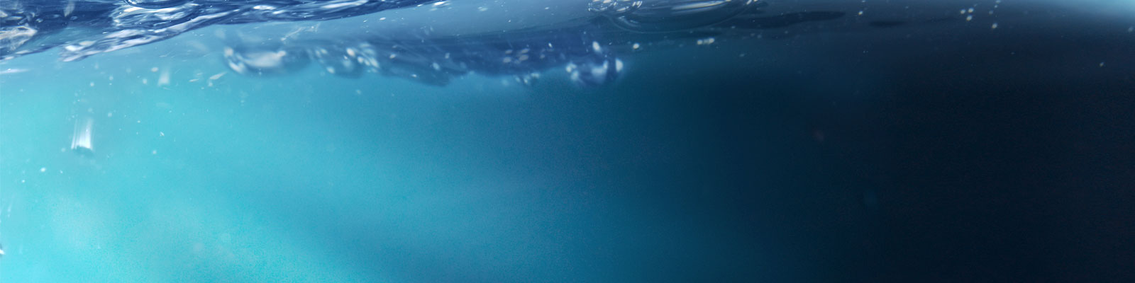 海洋情缘 - 背景